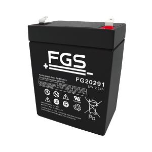 FGS FG20291 12V 2,9Ah Blei-Akku / AGM Batterie