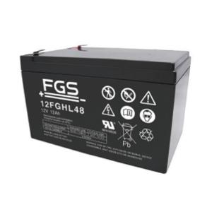 FGS 12FGHL48 12V 12Ah Blei-Akku / AGM Batterie Hochstrom Longlife
