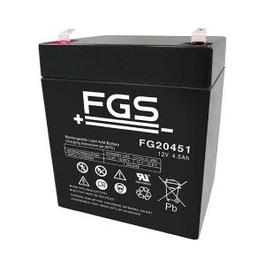 FGS FG20451 12V 4,5Ah Blei-Akku / AGM Batterie