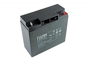 Fiamm FG21703 12V 17Ah Blei-Akku / AGM Batterie