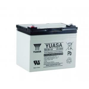 Yuasa REC36-12I 12V 36Ah Blei-Akku / AGM Batterie Zyklentyp